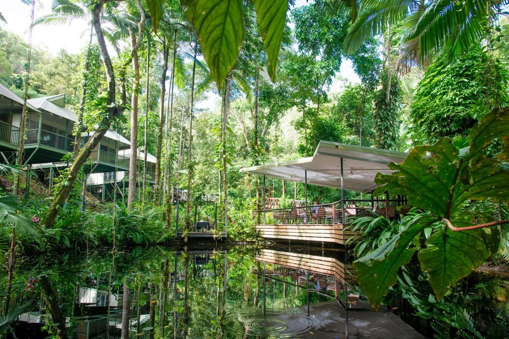 daintree eco lodge and spa