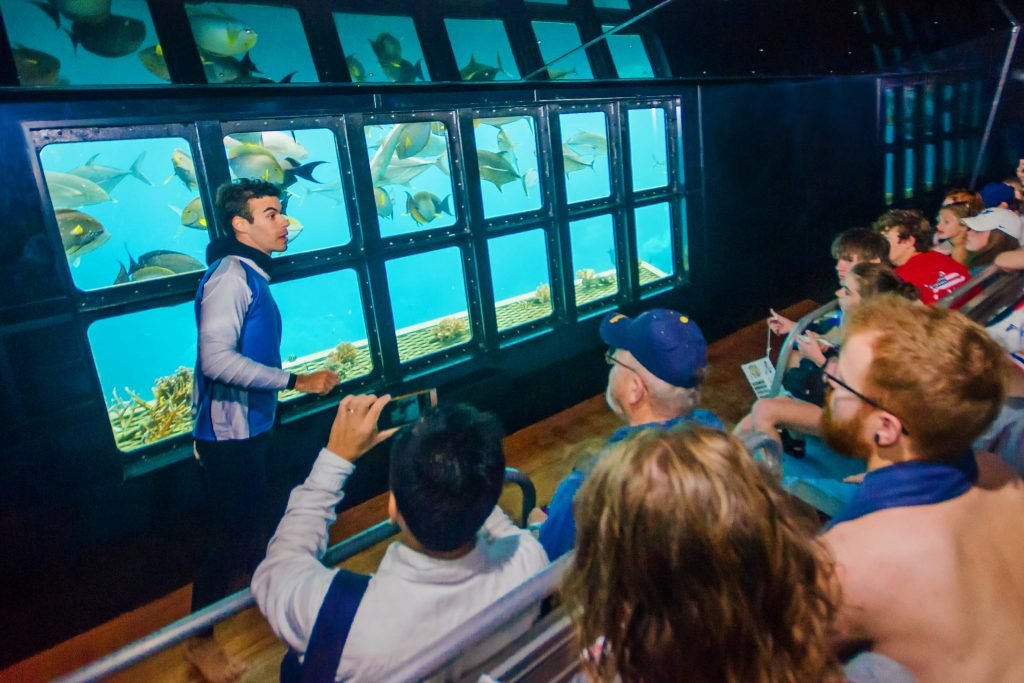 marine biologist on sunlover reef cruises