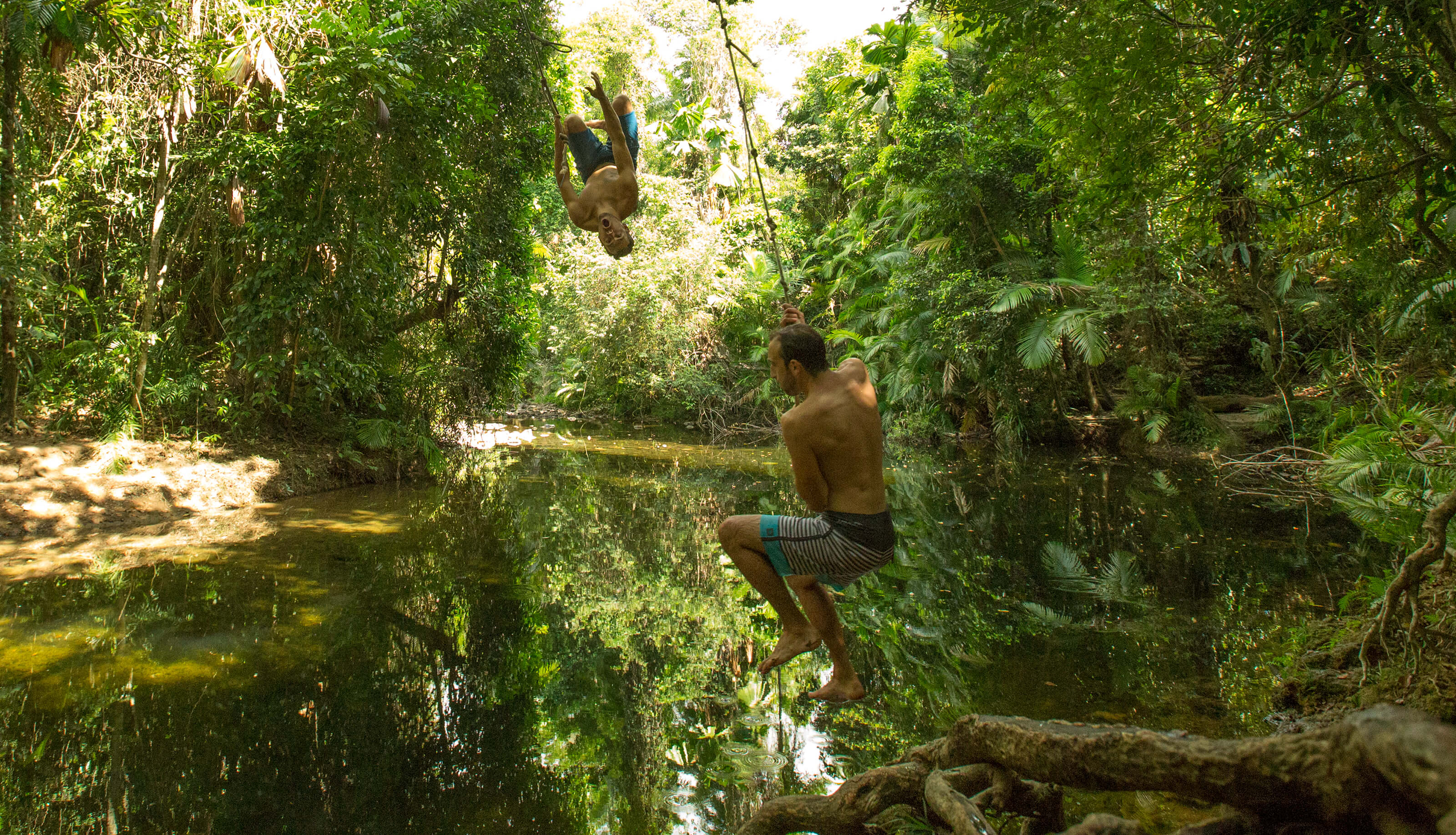 Rope swings above waterhole in rainfroest