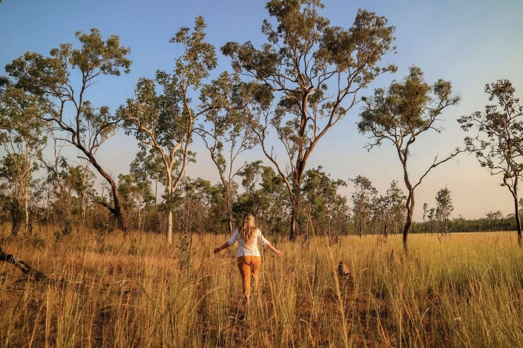 Wandering through the grass in the outback