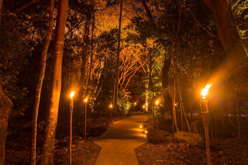 Flames of the Forest pathway
